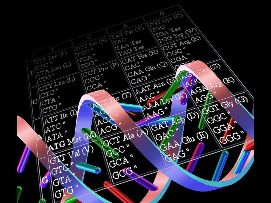 DNA, il grande libro della Vita_Palazzo delle Esposizioni