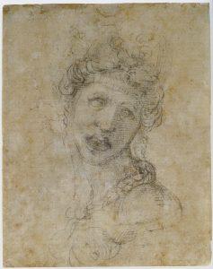 I Capolavori ritrovati di Michelangelo Buonarroti